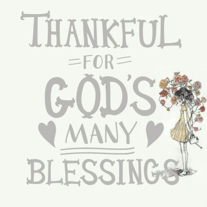 022e33d66994078326aa90c9c4f1f1cc--thankful-for-grateful-heart
